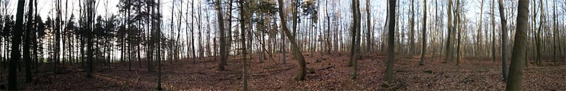 Varusschlacht - Schlacht am Teutoburger Wald -  Hügel Knochenberg